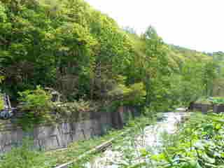 裏の川.JPG
